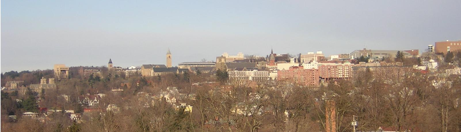The East Hill area of the city:  Cornell University campus and Collegetown